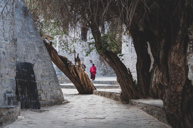 Photo taken in Lhasa, China