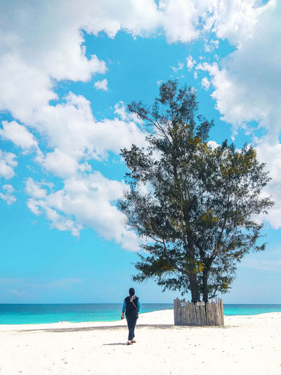 Tree Sea Full Length Beach Sand Men Shadow Standing Sky Cloud - Sky