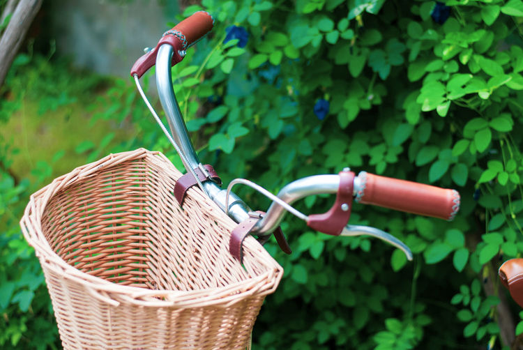 Vintage bicycle with wooden front basket park in the garden with green plant background, lovely day and activity Weave Basket Bicycle Bicycle Basket Bicycles Close-up Container Day Focus On Foreground Gardening Green Color Growth Handle Land Vehicle Leaf Mode Of Transportation Nature No People Outdoors Plant Plant Part Transportation Vintage Wicker