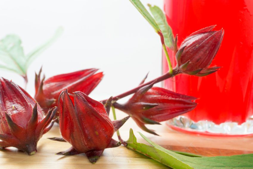 Roselle Juice Close-up Day Flower Flower Head Food Food And Drink Freshness Healthy Eating Indoors  Leaf Nature No People Plant Red Table