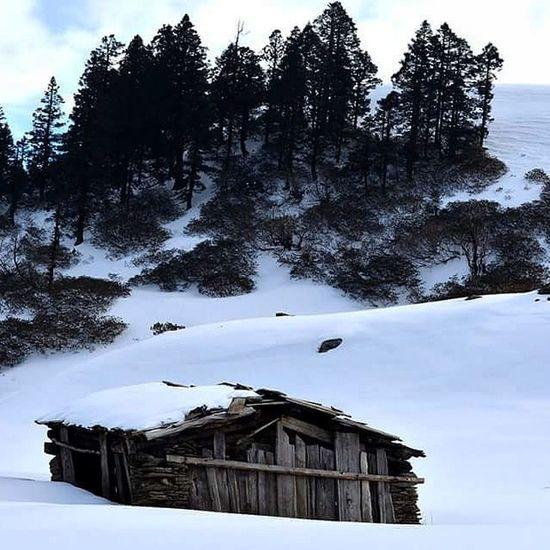 Yearend Northindia Uttarakand Sankri Yhai Snowtrek Kedarkantha Altitude 12600 Ft Buddy Snow White Hut Peak Insta_bengaluru Insta_meet Insta_edit Ig_indiashot Insta_world Ig_bangalore Ig_worldclub