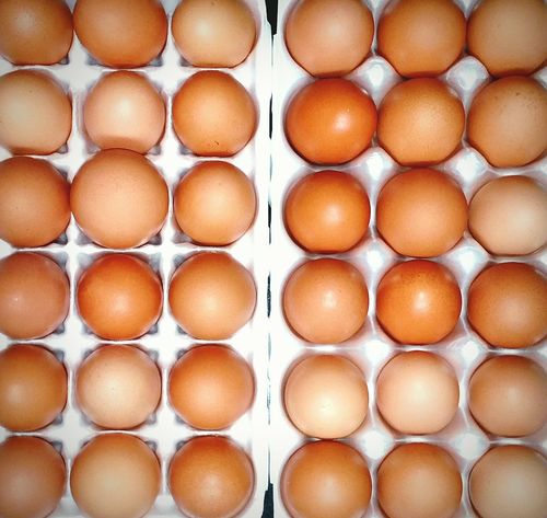 Fresh Eggs Chicken Eggs Country Life Food Photography Brown Eggs