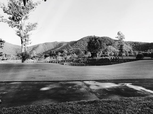 EyeEm Nature Lover Beauty In Nature Tree Nature Sky Landscape Outdoors Day Beauty In Nature No People Scenics Mountain Freshness EyeEm BlackandWhite Black And White Collection  EyeEmNewHere EyeEm Black&white! Black & White