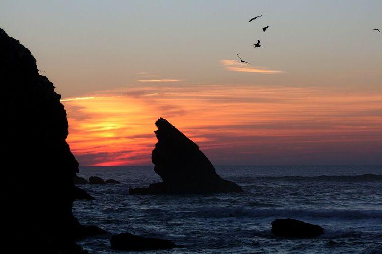 Winter sunset on Adraga beach, with seagulls Sunset Sky Sea Water Rock Animal Themes Beauty In Nature Scenics - Nature Beach Bird Horizon Over Water
