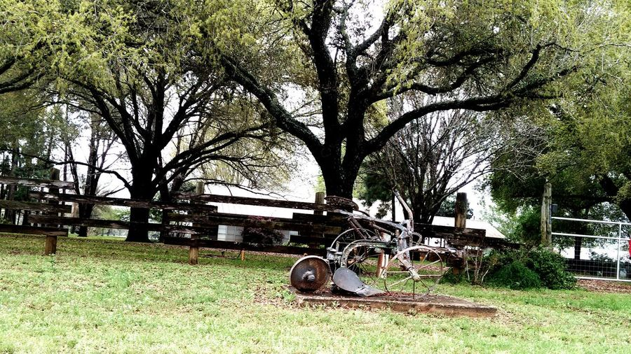 Im mostly certain that this contraption was used as a mode of transportation. Cool Finds Countryside Love It Beautiful Day Eye4photography  Taking Photos Getting Inspired Hugging A Tree EyeEm Nature Lover