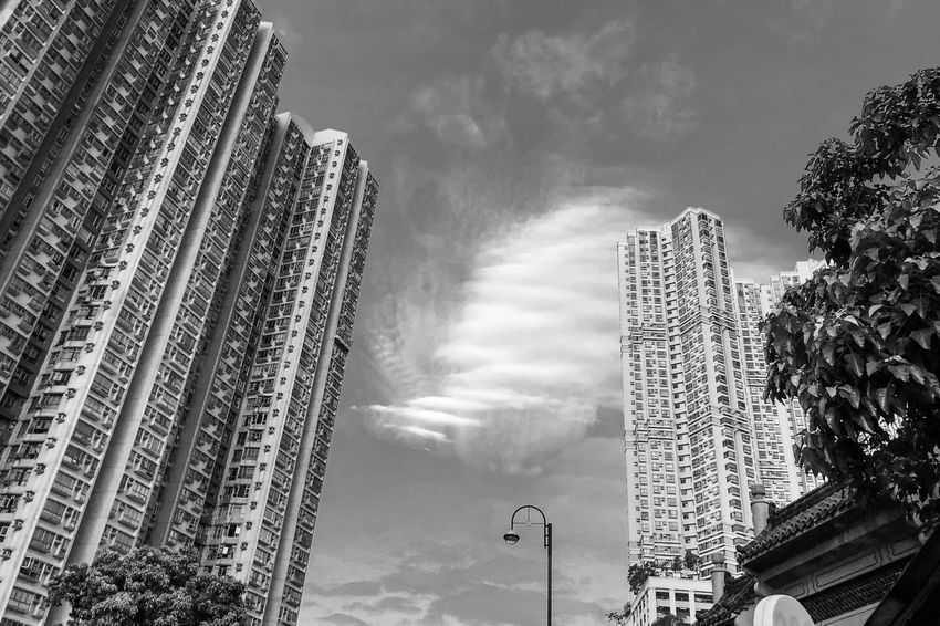 A fine day Light And Shadow Black And White Monochrome Sky Low Angle View Cloud - Sky Built Structure Plant Nature Architecture Outdoors Building Exterior Tall - High Building