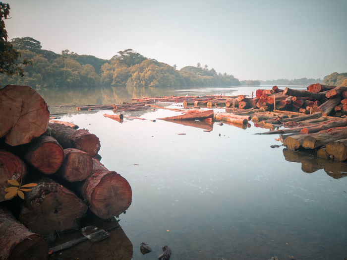 Timber industry along the back of kallai river in calicut