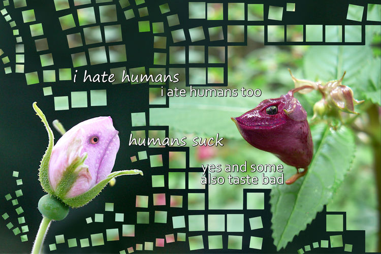 Two flowers talking Close-up Flesheaters Flowers Green Green Color Humor Meatlovers Nature Photo Manipulation Pink Color Plant Rosé Text Peoplehater Humanhater Angry Mad Kuvankäsittely Kukat Ruusu Vihreä Lihansyöjät Luonto Fine Art Photography