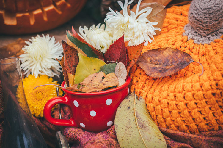 A Cup of Autumn