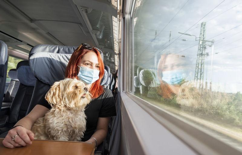 Panoramic shot of dog in train