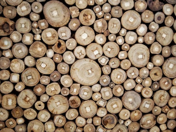 Log Timber Full Frame Stack Backgrounds Wood - Material Pattern Lumber Industry No People Large Group Of Objects Textured  Close-up Forestry Industry Outdoors Woodpile Wood Circles Eyeem Philippines