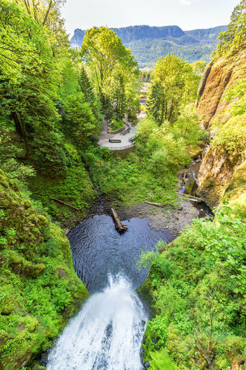 View from above Multnomah Falls in the Columbia River Gorge in Oregon Cascade Columbia Columbia River Gorge Day Forest Green Color Landscape Multnomah Multnomah Falls  Nature Oregon Outdoors Pacific Northwest  Portland Scenics Sky Tree United States USA Water Waterfall