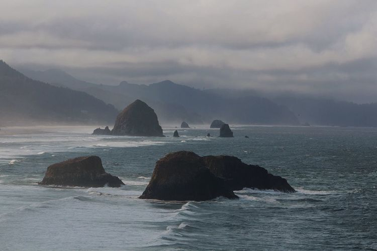 Coastal. Pacific Northwest  Oregon Landscape Nature