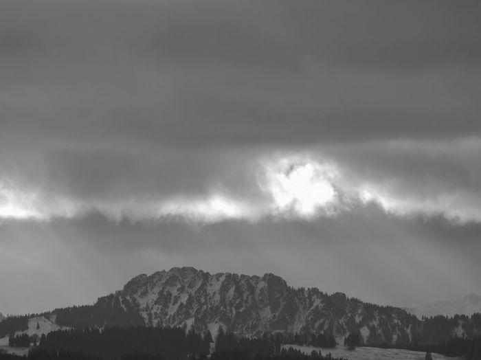 the alps seen from Kempten Sky Cloud - Sky Beauty In Nature Scenics - Nature Tranquil Scene Tranquility Nature Mountain No People Tree Outdoors Storm Environment Storm Cloud Non-urban Scene Mountain Range Idyllic Overcast Day Ominous Mountain Peak Alps Allgäu Allgäuer Alpen