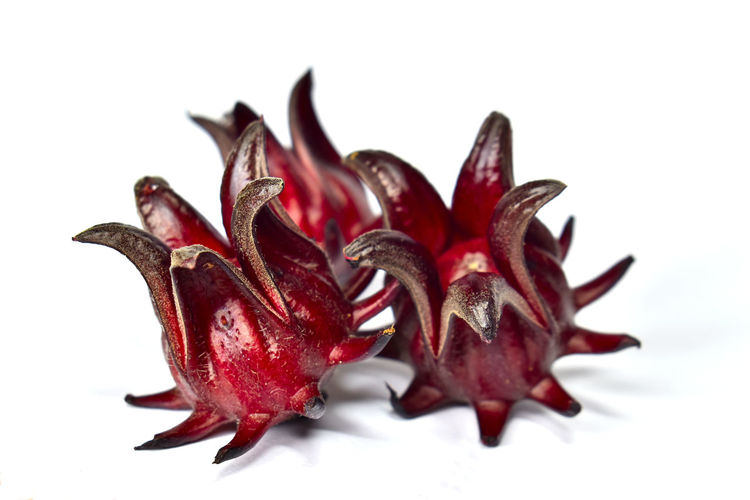 Roselle fruits,