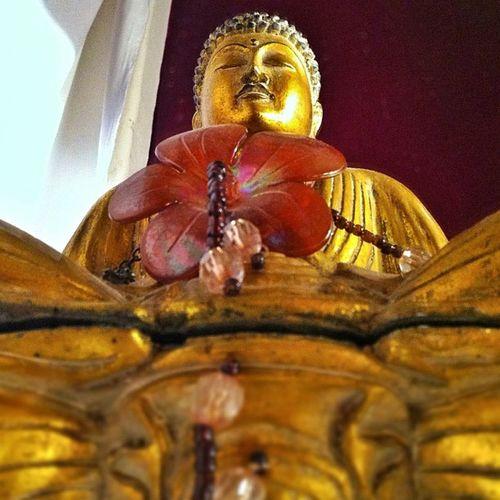Buddha ON the