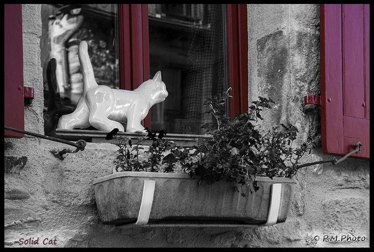 France Colorsplash Streetphoto_bw