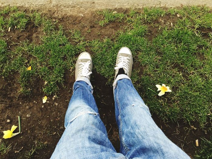 Daily Life Dog Walking Wallsend Relaxing Local Park New Converse Dirty Shoes