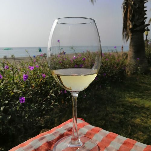 Flower Water Wineglass Alcohol Drink Wine Drinking Glass Summer Beach Table White Wine Cocktail