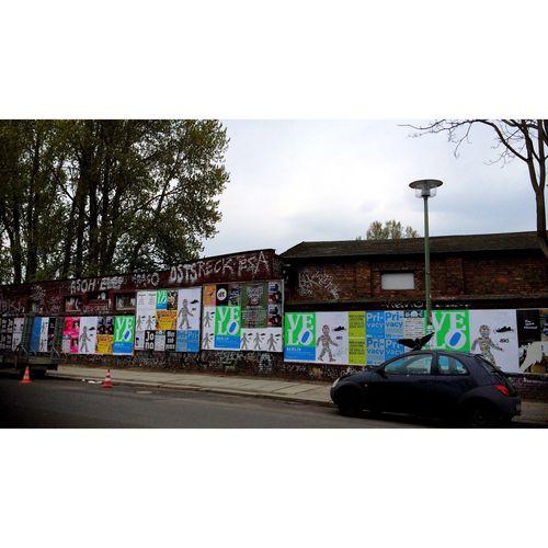 // LoveBird // Bird Stretching Cars Naturalized Urban Landscape Streetphoto_color Lerone-frames Friedrichshain Berliner Ansichten Love SignSignEverywhereASign Poster Posterwall Wall - Building Feature Urban Animals Urban Encounters Streetphotography Streetphotography Urbanphotography