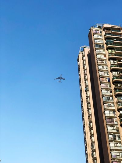 EyeEm Selects Sky Architecture Blue Built Structure Clear Sky Low Angle View Transportation Mode Of Transportation Airplane Day Building Flying City Travel Copy Space Nature Air Vehicle Tall - High No People Building Exterior