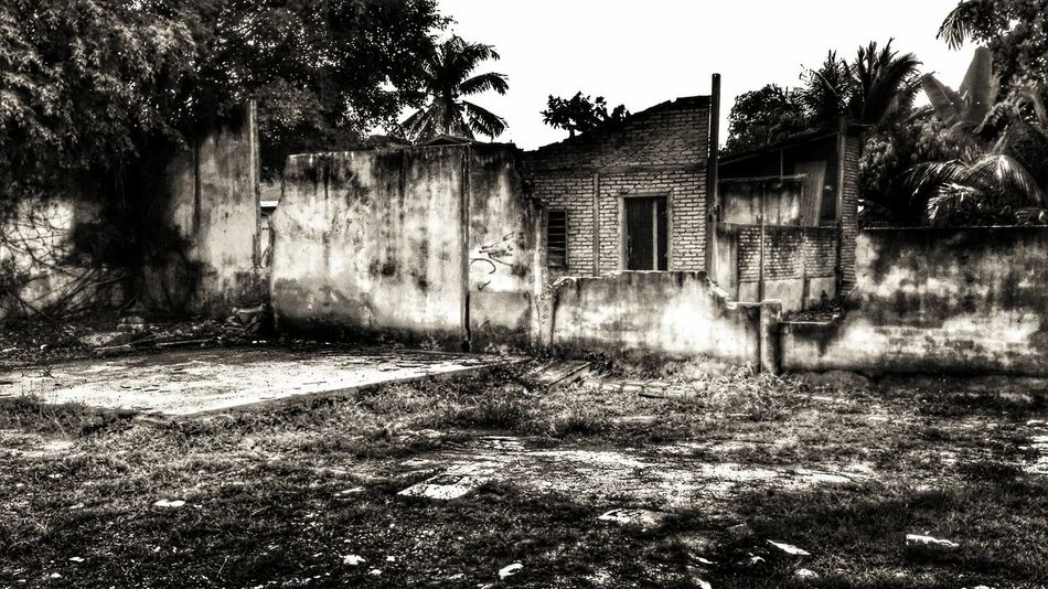 Hoping in ruins..... Abandoned Architecture Built Structure Demolition Deterioration Disaster Dream Grass Haunted House Nature Nightmare No People Obsolete Old Outdoors Plant Residential Structure Ruins Run-down Tranquility Warzone Fine Art Photography Huaweimobilemy Showcase July