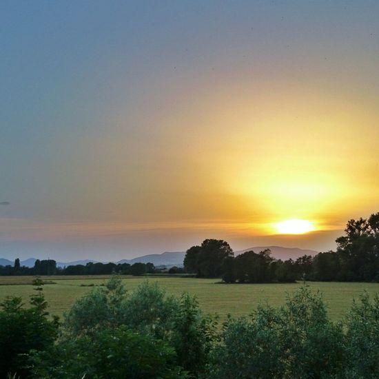 Pfaelzer Sonnenuntergang Sonyxperiaz2 Snapseed Pfalz Germany