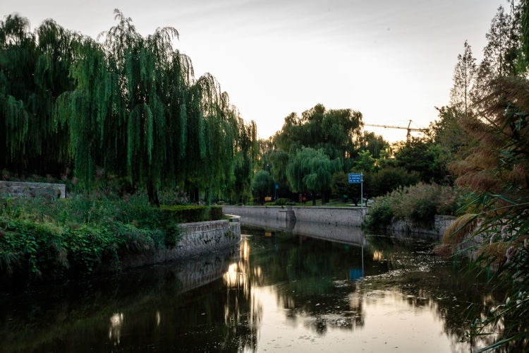 City Dynasty Reflection Sunlight Tree Wall YUAN Bridge - Man Made Structure Canal Capital Day Dusk Growth Moat Nature No People Outdoors Park River Sky Sunset Tree Water