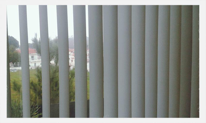 Está tão bom lá fora... RainyDays Home Sweet Home Wintertime First Eyeem Photo