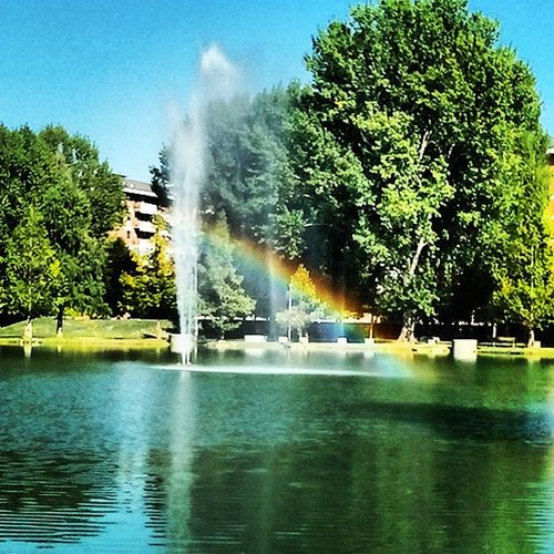Arcobaleno  Lake Love Colours rainbow blu green red bestoftheday picoftheday instaphoto instagram instamagic instapic water instatag tree parco italy moment modena instatalent