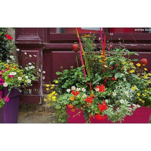 Entrée libre... Sancerre Igerscher Architecturerurale Facadecommerciale fleurs jardiniere grainedenature