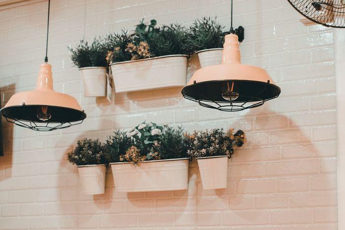vase and lights Beauty Creative Interior Design Interior Lightroom Preset EyeEmSelect EyeEm Selects Vase Tree Window Box Hanging Home Showcase Interior Plant Architecture Needle - Plant Part