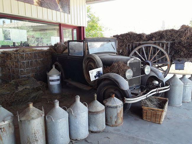 una distilleria di lavanda in provenza....