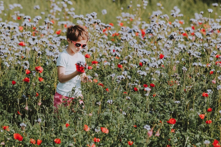 Boy standing by blooming flowers