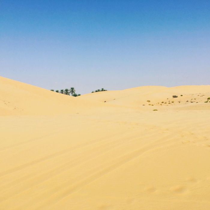 Desert and sky Skyblue Desert Sand Land Sky Desert Scenics - Nature Landscape Sand Dune Tranquility Clear Sky Tranquil Scene Copy Space Non-urban Scene Beauty In Nature No People