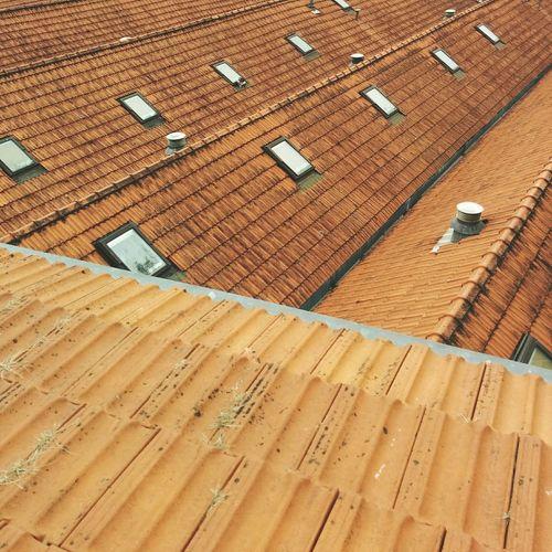 Tejados Roof