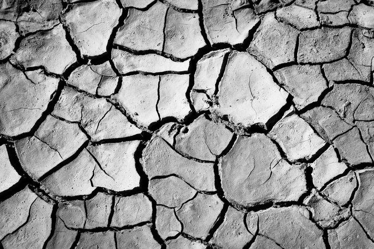 Cracked l Black & White Ice Age