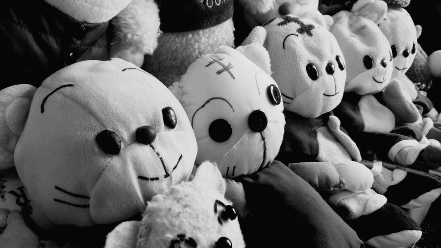 08252016 しまじろう 集合写真 ぬいぐるみ Doll Photography