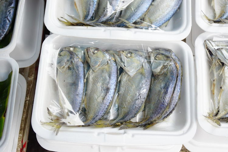 mackerel Animal Close-up Container Directly Above Fish Food Food And Drink For Sale Freshness Healthy Eating High Angle View Indoors  No People Plastic Plastic Bag Raw Food Seafood Silver Colored Still Life Tray Vertebrate Wellbeing