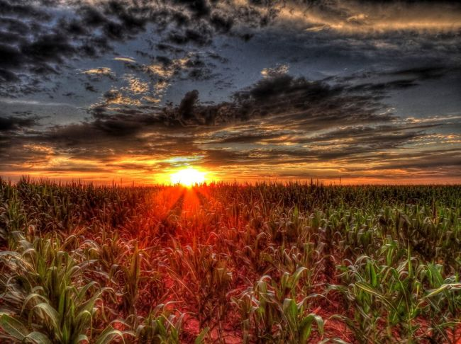 Sunset near Willard Bay in Northern Utah. Sunset Utah Landscape Landscapes