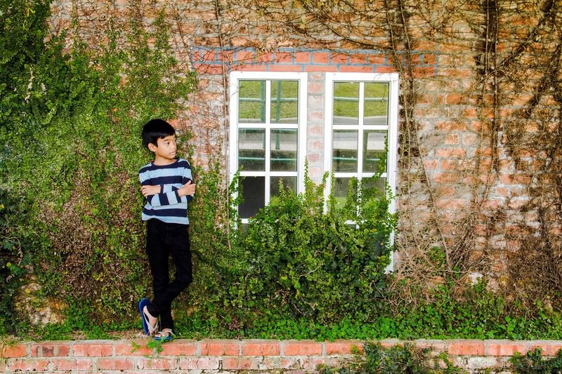 Thoughtful Boy With Arms Crossed Standing Against Ivy Wall
