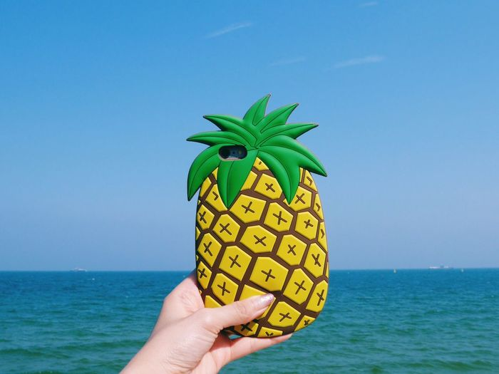 Pineapple Beach Pineapple Sky Vacation Sea Blue