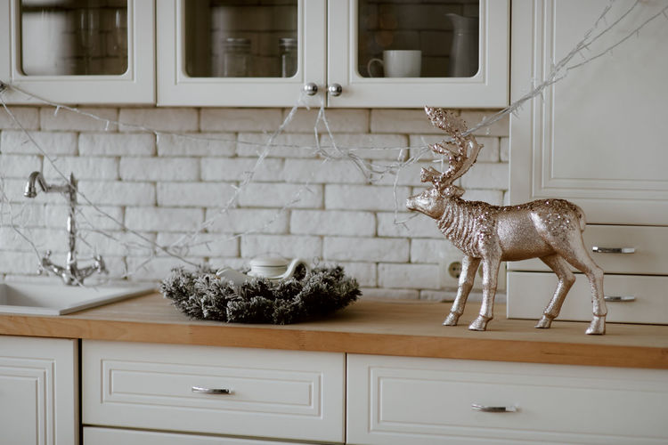 View of an animal representation at home