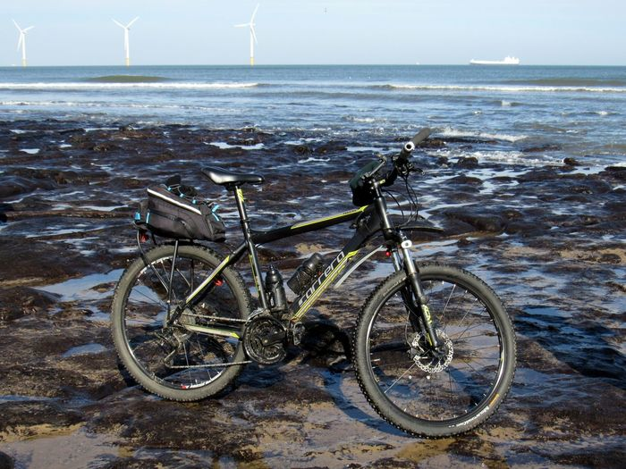 New on ancient Cycle Storm Wood Beach Beast From The East Bike Exposed Low Tide Low Tide Revelations Neolithic North Sea Petrified Forest Petrified Wood Redcar Sea