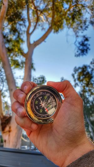 Cropped hand of person holding navigational compass against trees