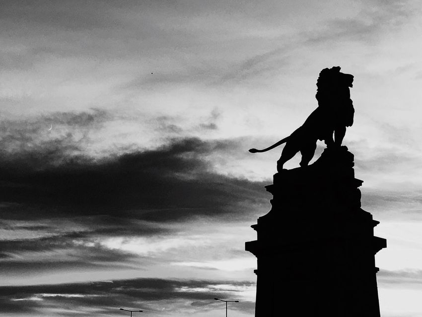 Black And White Friday Statue Sculpture Cloud - Sky Silhouette Löwe Lion