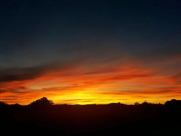 Sunset Dramatic Sky Scenics Nature Dark Sky Landscape Tree Tranquility France EyeEmBestPics EyeEm Best Shots Eye4photography