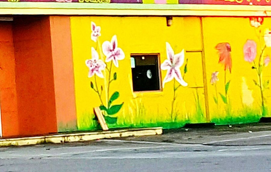Street Photography Awesome Art Flower Collection Colorfull Art Old Architecture Abandoned Building The Week On Eyem Open Edit