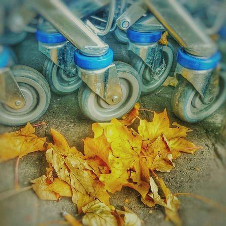 Autumn around town Taking Photos Hanging Out Check This Out Enjoying Life Autumn🍁🍁🍁 Urbanexploration EnoyingLife Out Walking