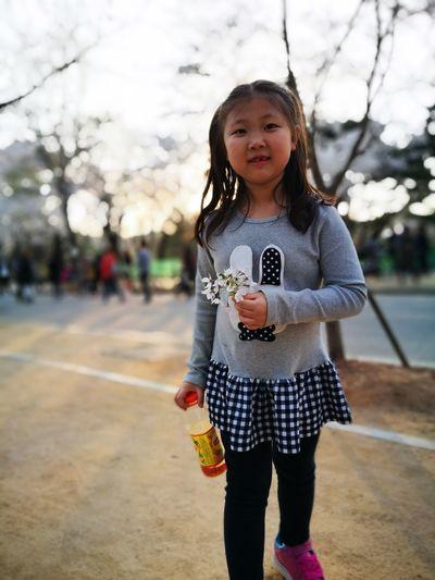 인천대공원 가족나들이 딸과함께 벚꽃이만개한